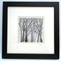 Dark Woods & Sacred Groves 4 29 x 29cm £85