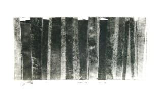 Wild Woods 2 - Monotype 30 x 22cm £65