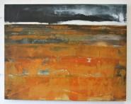 Wetland Wasteland 2 £250 36 x 46 cm