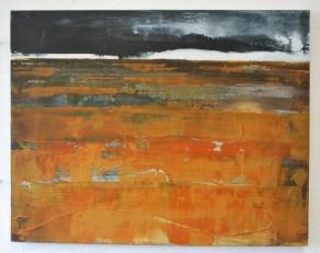 Wetland Wasteland 2 SOLD £250 36 x 46 cm