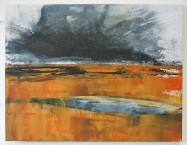 Wetland Wasteland 3 £250