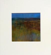 Marsh 5, mounted size 30x30cm, £45
